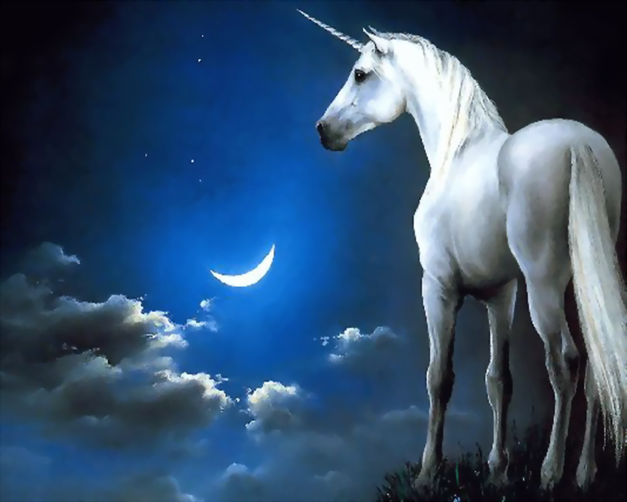 Unicorns fantasy magical animals wallpapers unicorns fantasy magical animals voltagebd Image collections