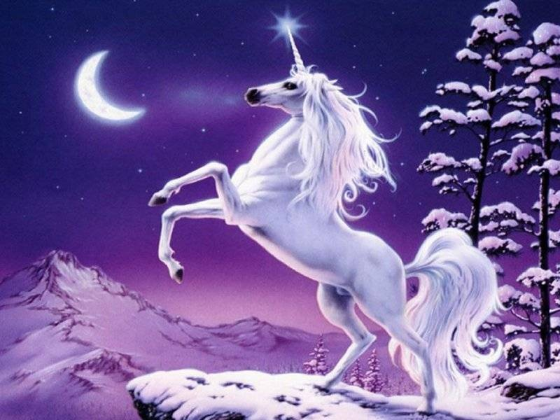 Unicorns fantasy magical animals wallpaper unicorns fantasy magical animals voltagebd Image collections