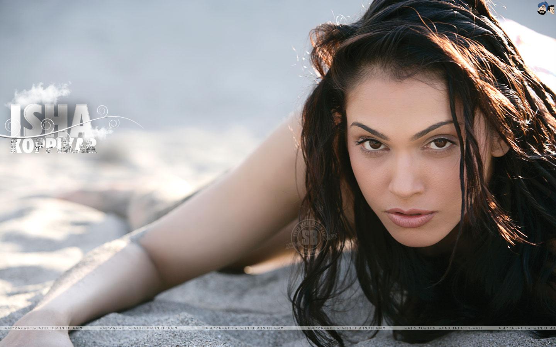 Watch Alexandra Barreto video