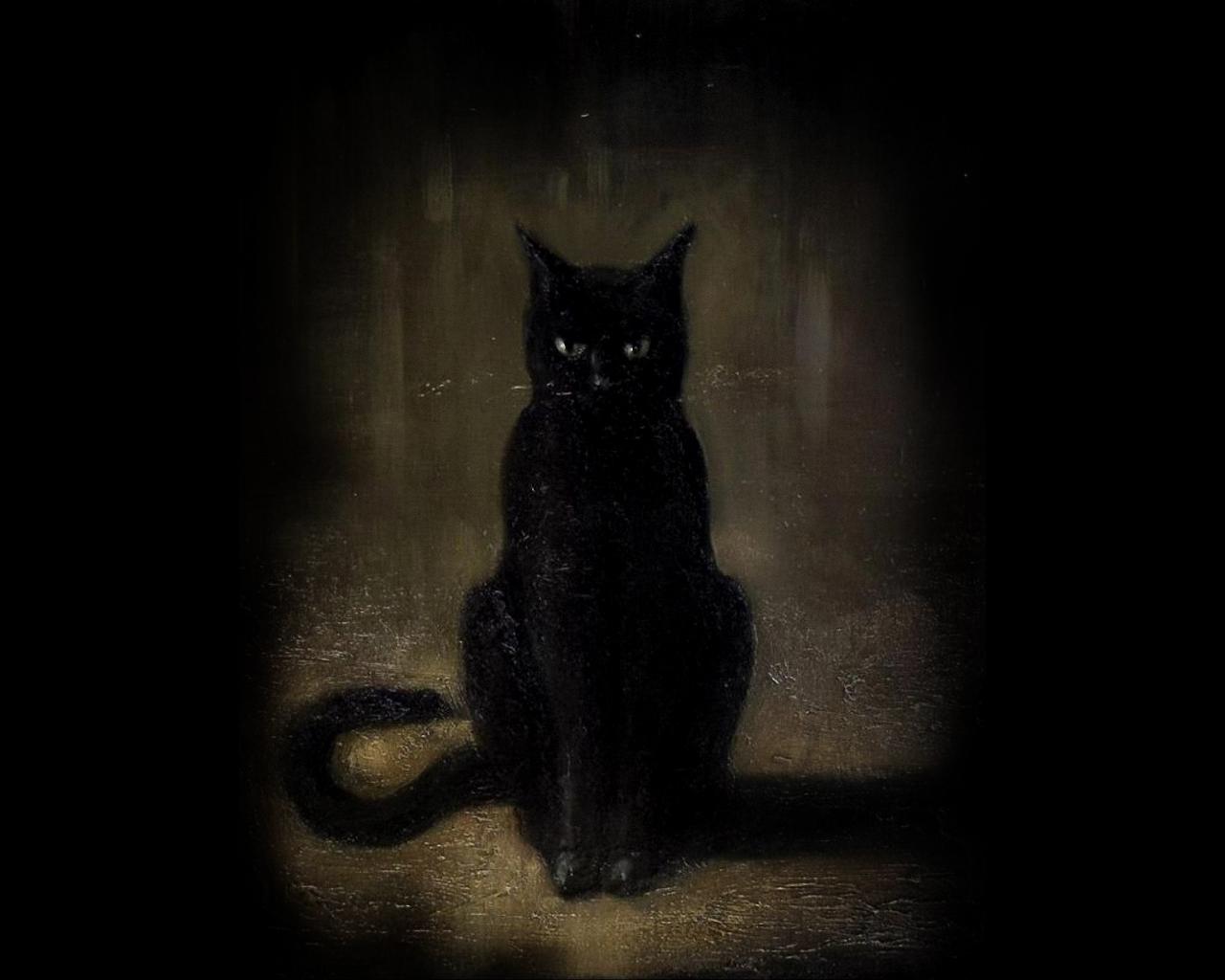 Картинки кота фэнтези