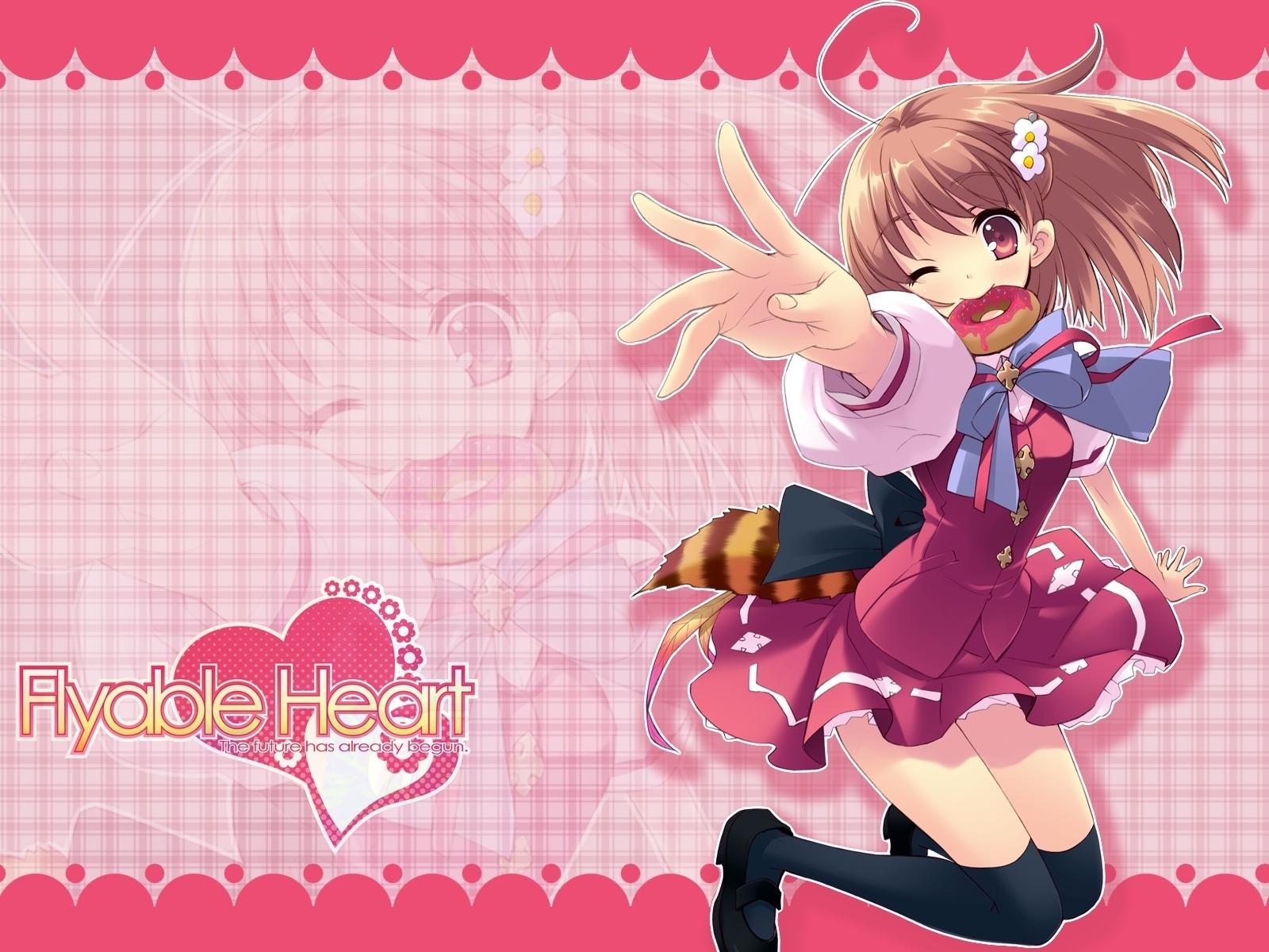 Photos Flyable Heart Games vdeo game
