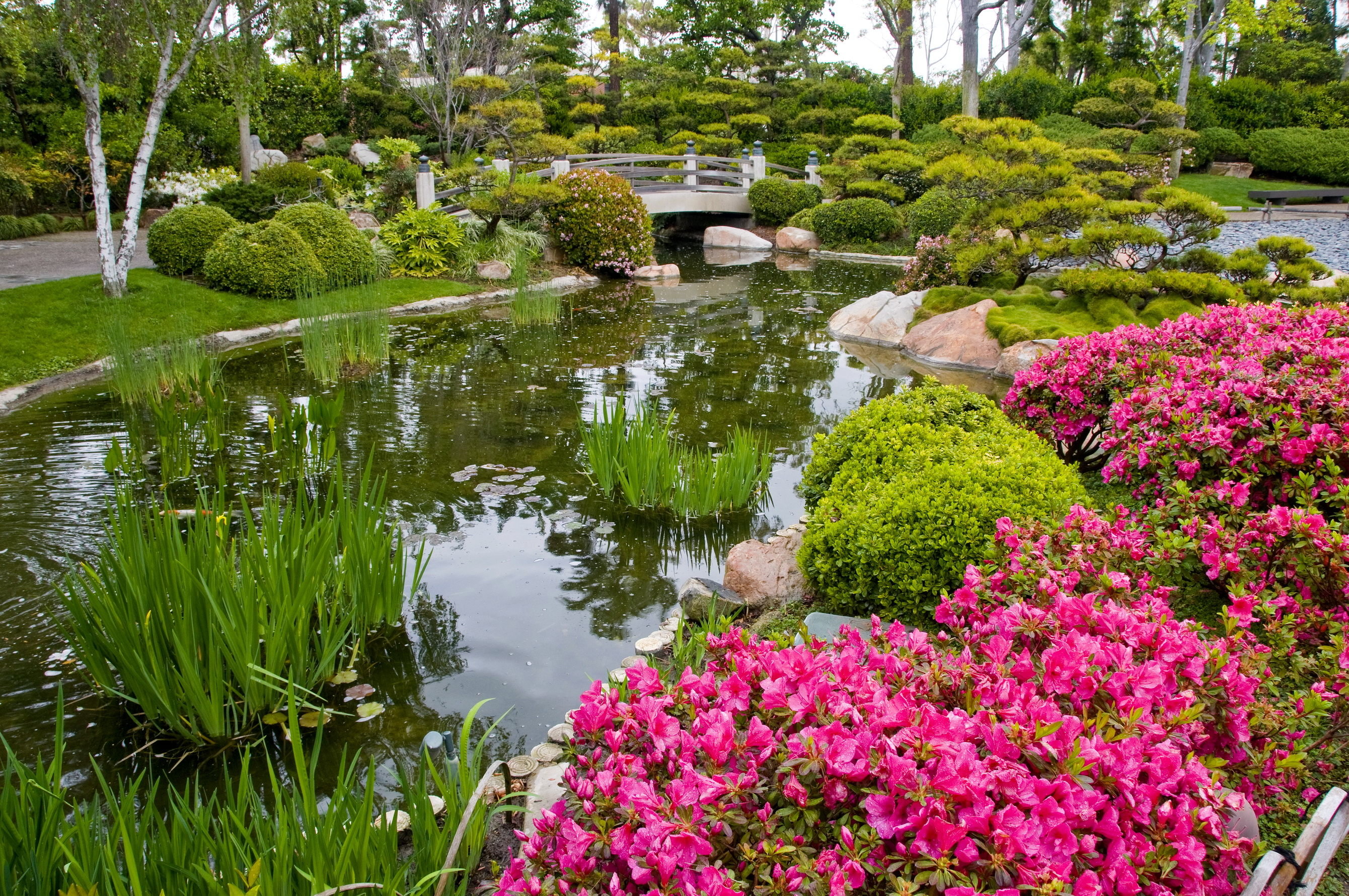 Cute Nature Gardens Gallery   Landscaping Ideas For Backyard .