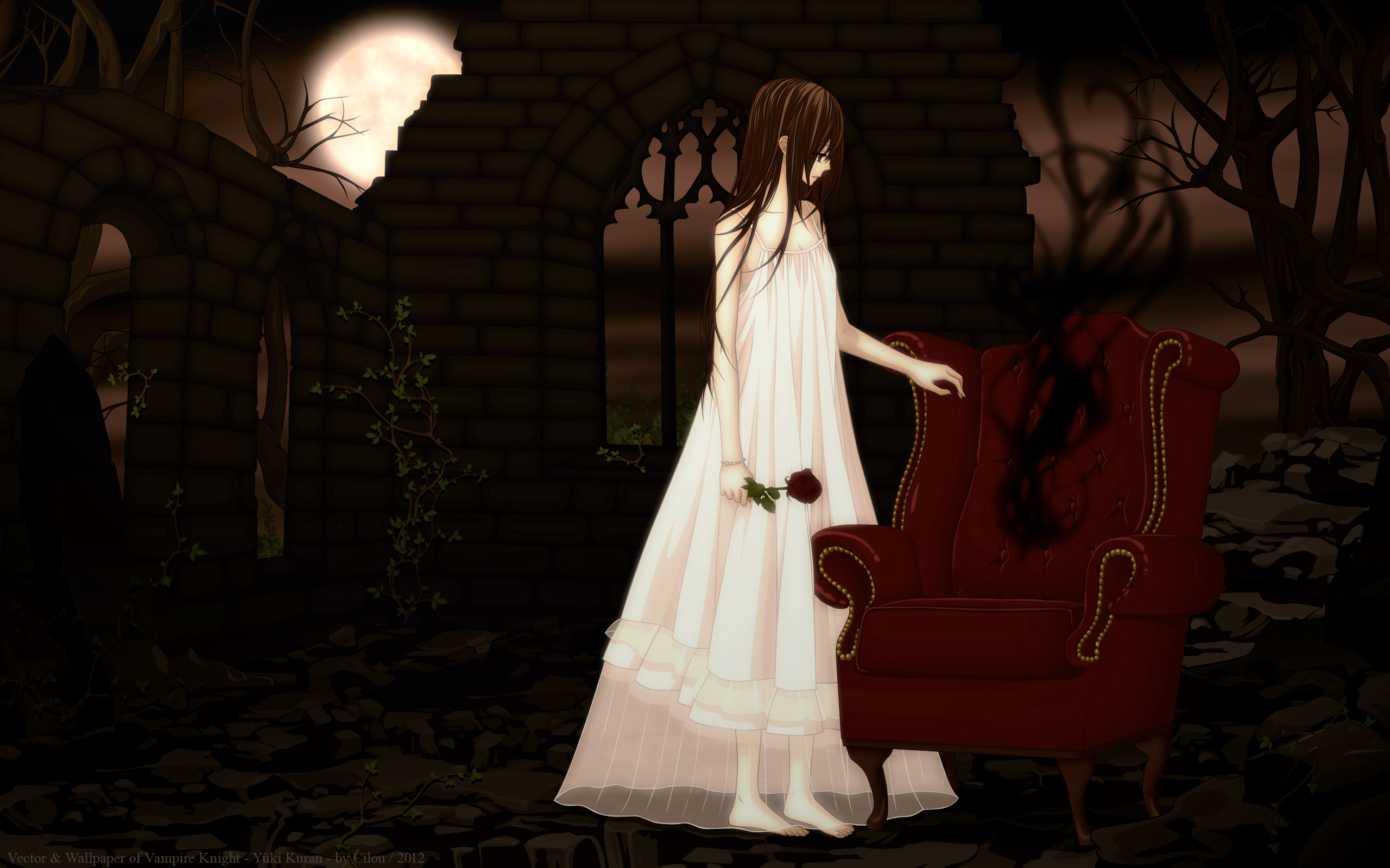 pictures vampire knight girls anime 2560x1600