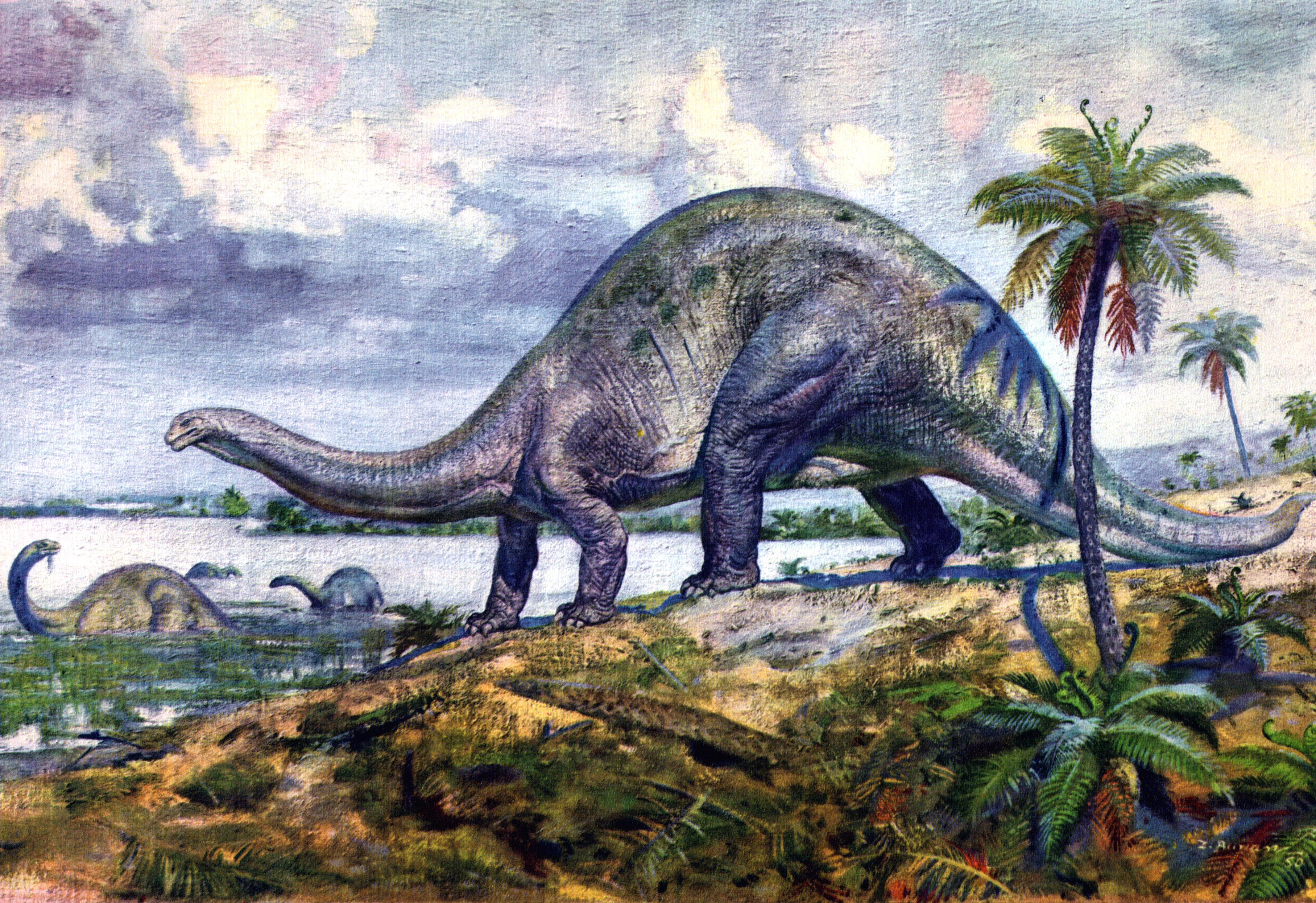 Рисунки динозавров и вымерших животных 2