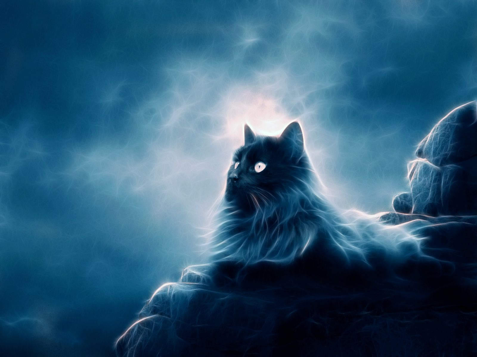 Big Cat Magic Wallpaper