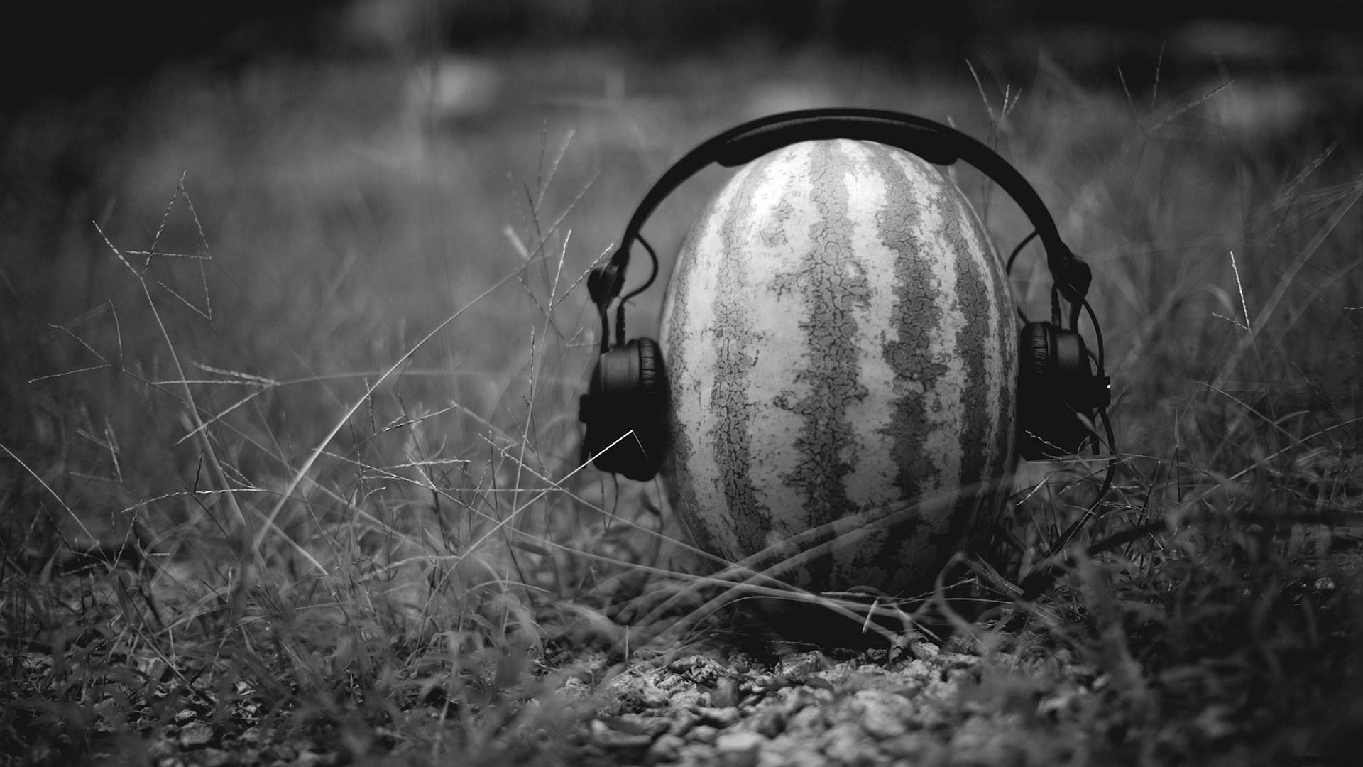 Image Headphones Creative Watermelons