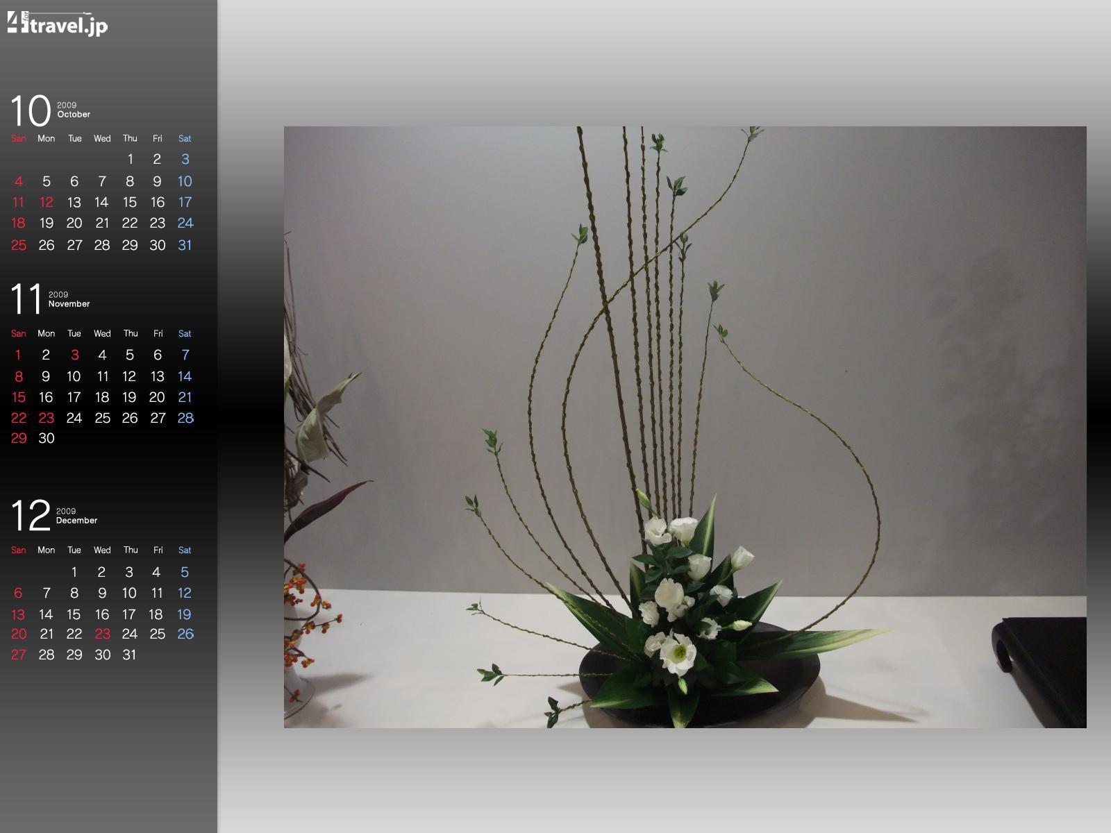 Image flower Ikebana Flowers