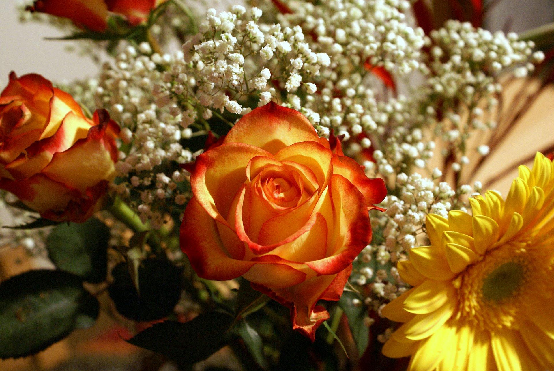 Для тебя во всем цветы-посмотреть открытку