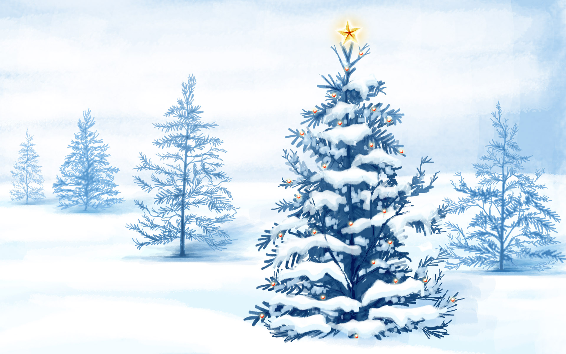 Pictures Spruce Winter Nature Christmas Tree Snow Trees