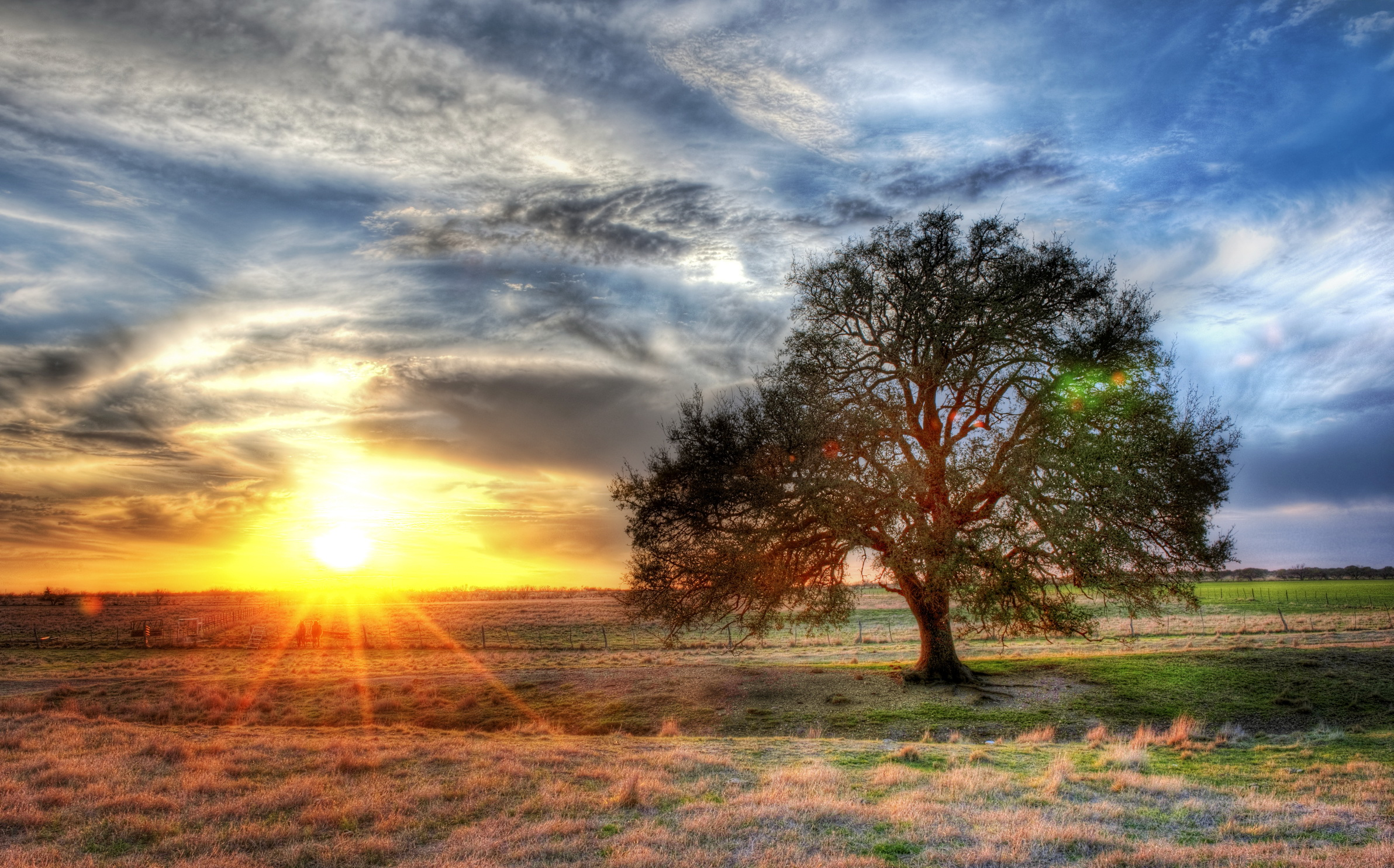 fonds d 39 ecran levers et couchers de soleil ciel rayons de lumi re arbres hdr nuage soleil nature. Black Bedroom Furniture Sets. Home Design Ideas