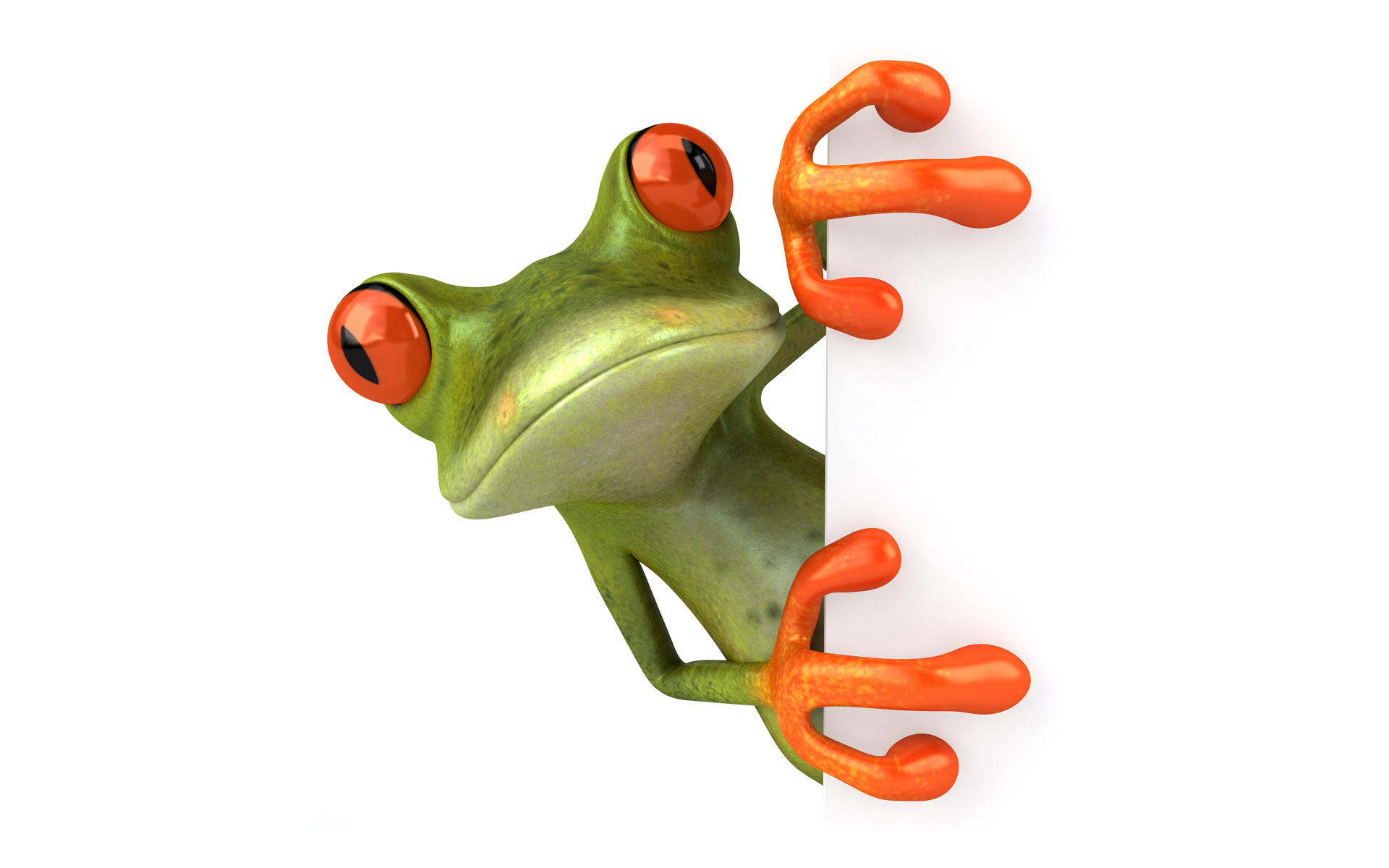 Frogs 3d graphics animals white background photo frogs 3d graphics animals white background voltagebd Images