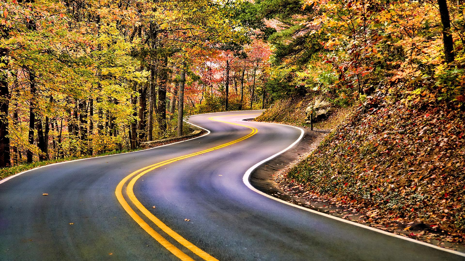 Картинки природа дороги