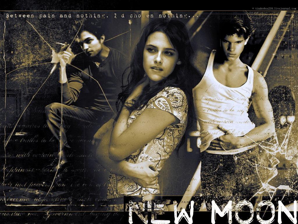 Fondos de pantalla crepsculo la saga crepsculo luna nueva kristen 1024 x 768 altavistaventures Gallery