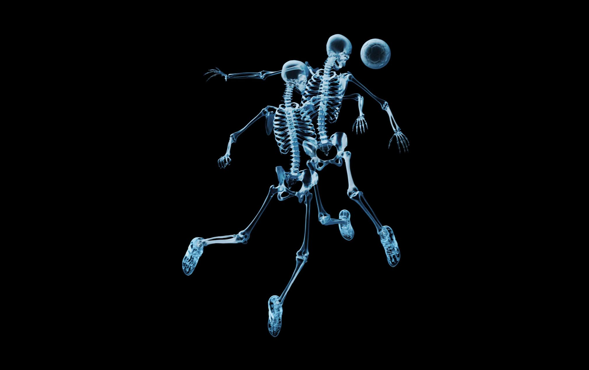 Fondos De Pantalla Fondo Negro Esqueleto Humor Descargar