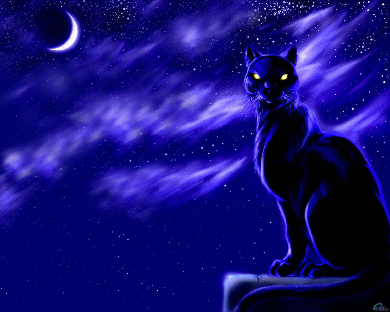 Photo Cats Animals Painting Art