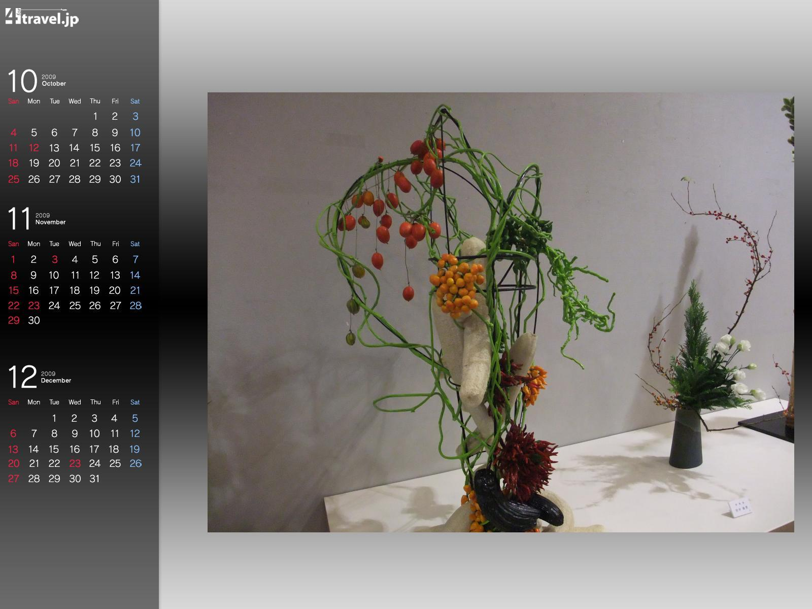 Photos Ikebana Flowers flower