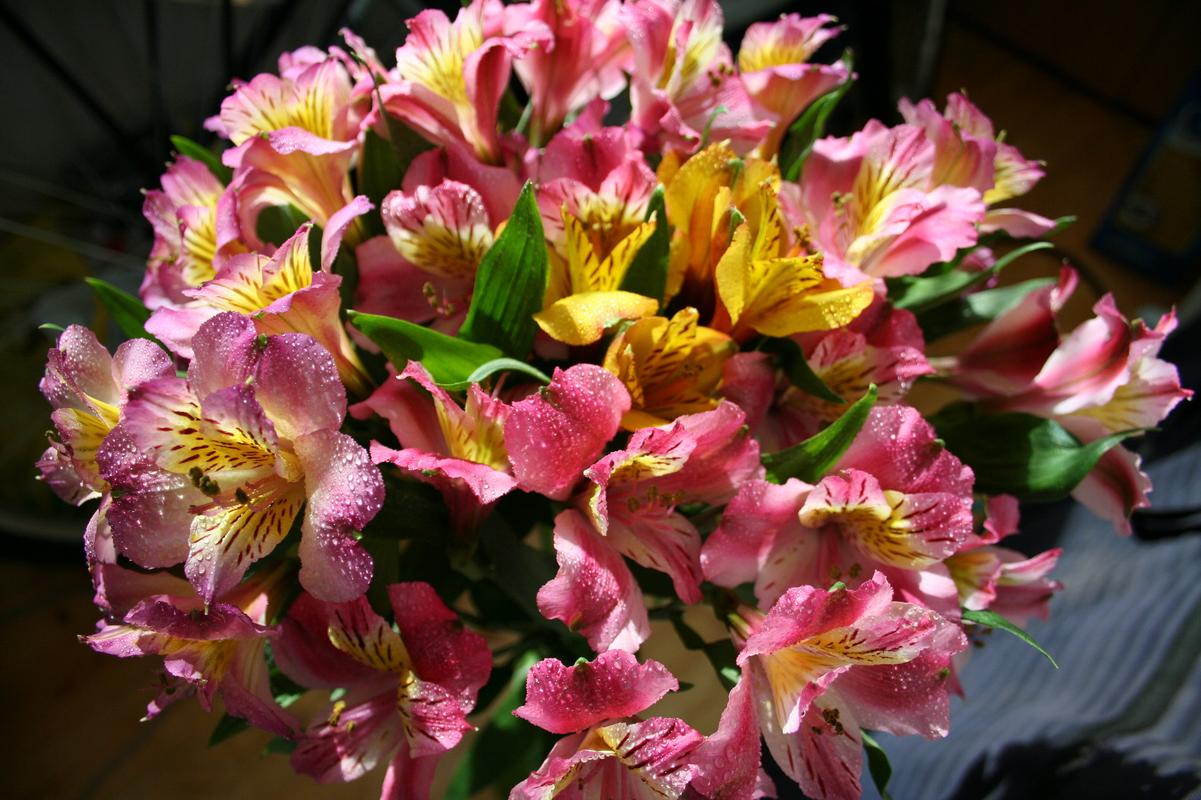 Виды цветов для букета названия и фото