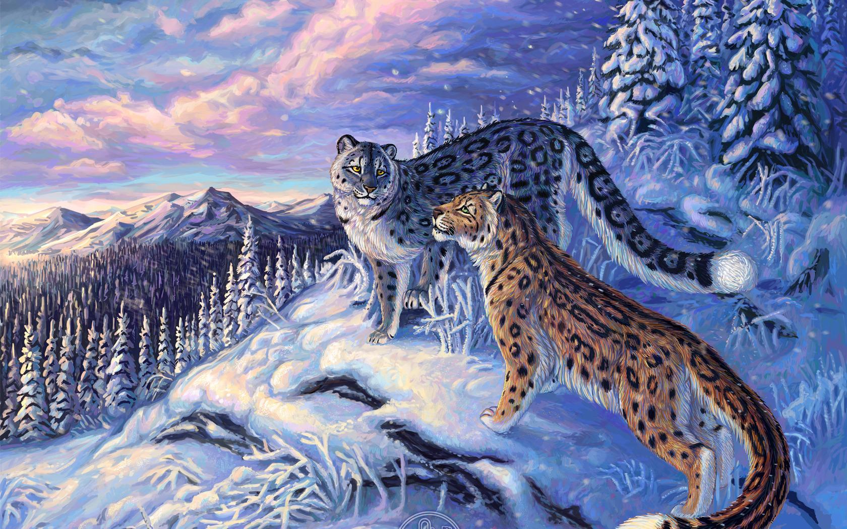 Animales Felino Leopardos Fondo De Pantalla Fondos De: Fondos De Pantalla Grandes Felinos Leopardo De Las Nieves