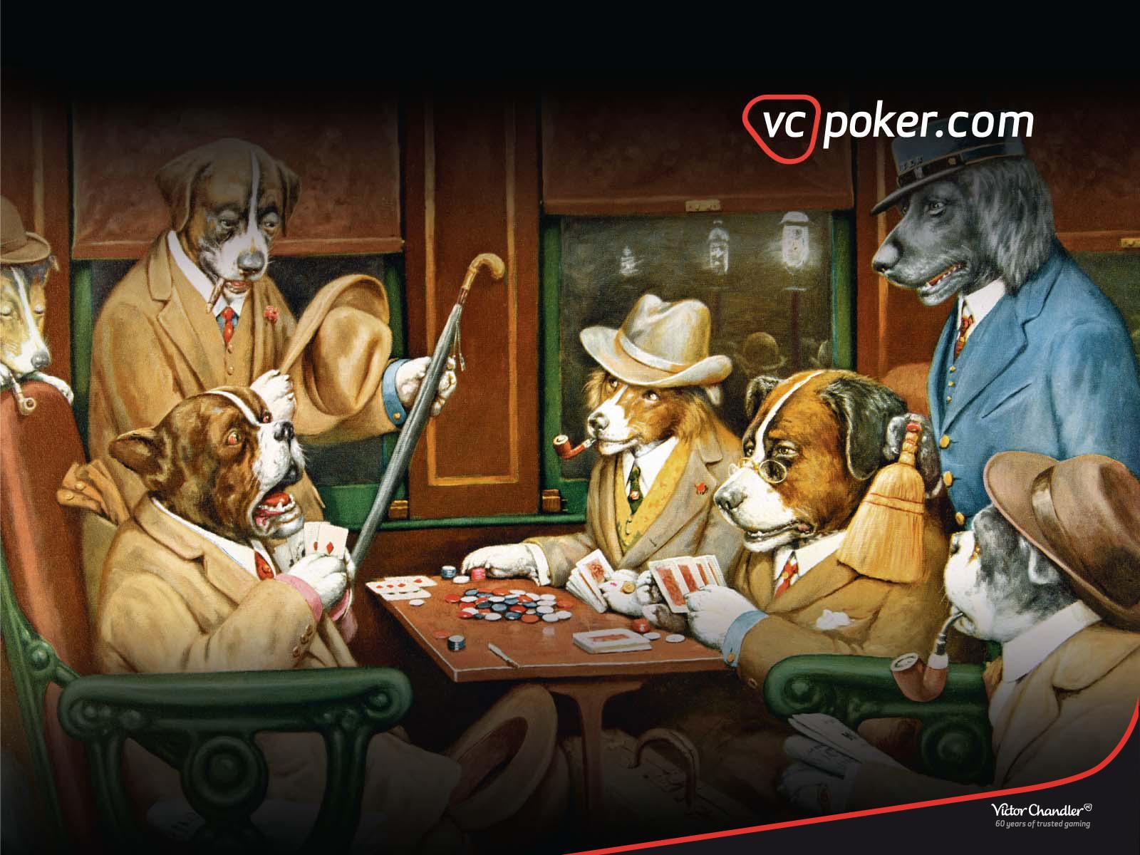 Собаки играют в карты в картинках казино фараон видео как выигрывать