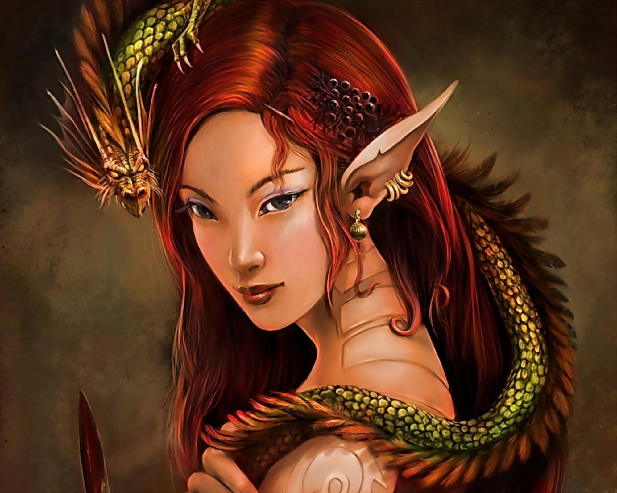 fantasy elfen bilder