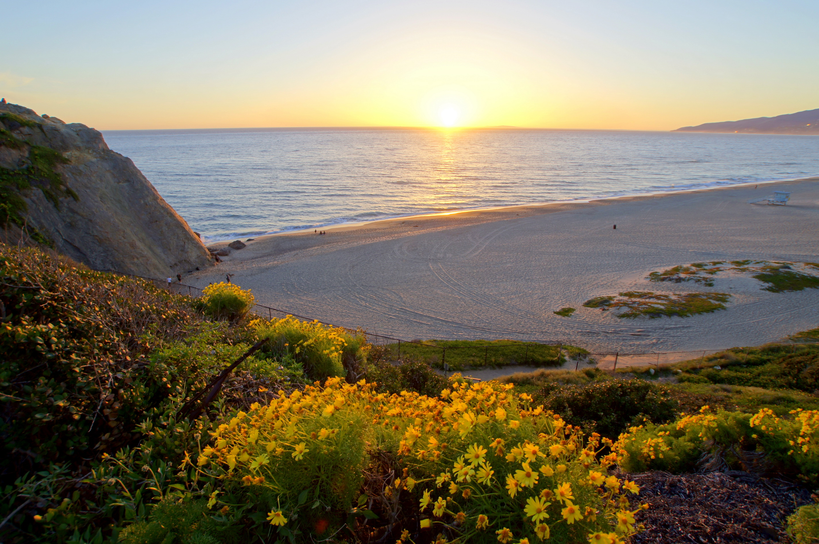 Coast Sea Sunrises and sunsets Beach Horizon California Malibu Nature Flowers
