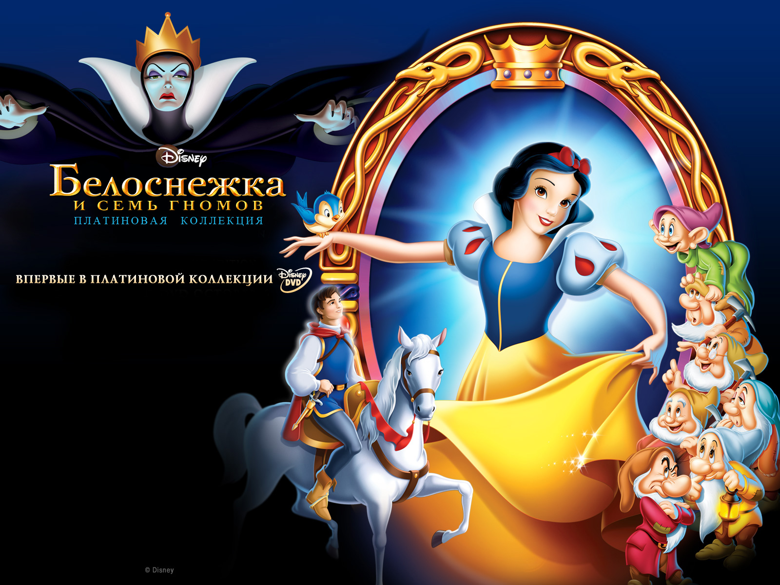 wallpapers disney snow white and the seven dwarfs cartoons