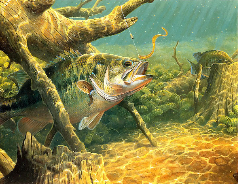 Картина рыбная ловля