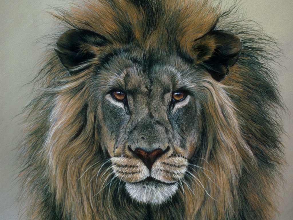 Арт льва