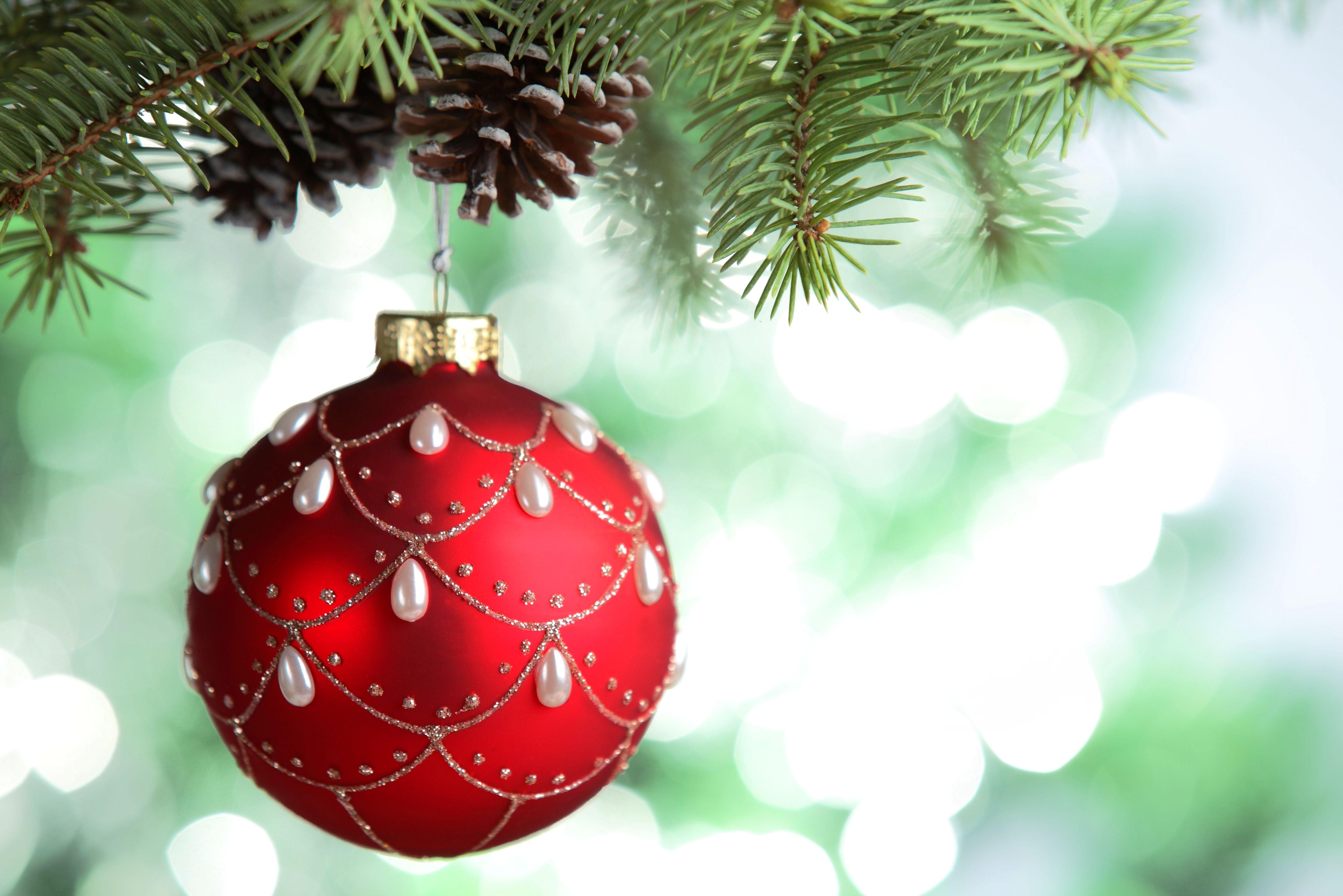 Kugel Für Tannenbaum.Fotos Neujahr Weihnachtsbaum Ast Kugeln Zapfen Feiertage 5050x3370