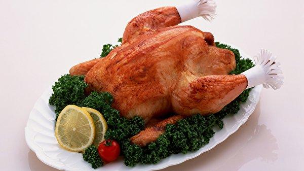 Современное мясо курицы