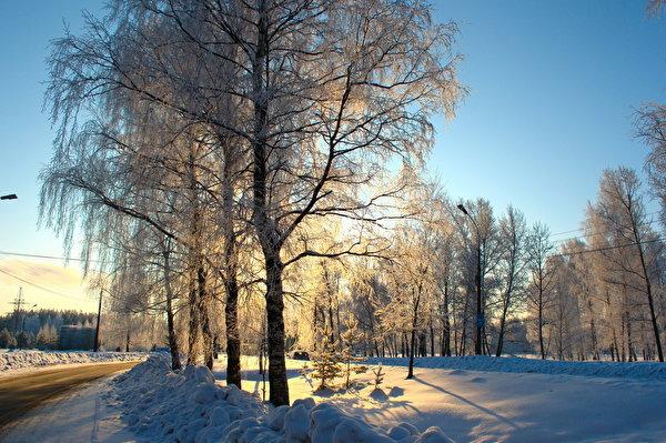 600x399 Estaciones del año Invierno Carreteras Nieve árboles Naturaleza