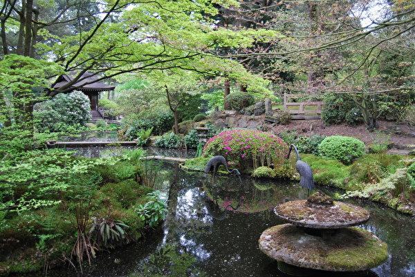 Foto england natur teich garten landschaftsbau design for Teich design