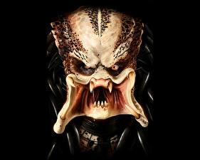 Bilder Monsters Daniel Luvisi