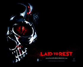 Wallpaper Laid to Rest