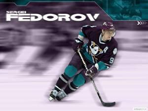 Wallpaper Hockey Sport