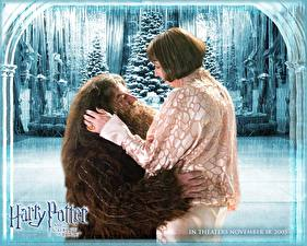 Image Harry Potter Harry Potter and the Goblet of Fire