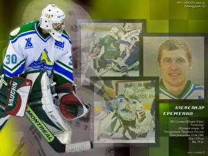 Wallpapers Hockey