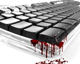 Picture Keyboard Blood Computers