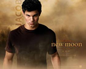 Wallpapers The Twilight Saga New Moon The Twilight Saga Taylor Lautner film