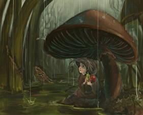 Hintergrundbilder Pilze Natur Fantasy