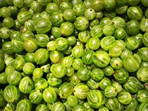 Bilder Obst Stachelbeere