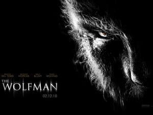 Desktop wallpapers The Wolf Man film