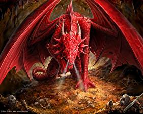 Fotos & Bilder Drache Anne Stokes Dragons Lair Fantasy fotos