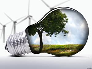 Pictures Creative Light bulb