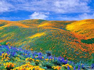 Fotos & Bilder Hügel Natur fotos