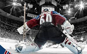 Pictures Hockey Sport