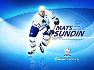 Wallpapers Hockey Sport