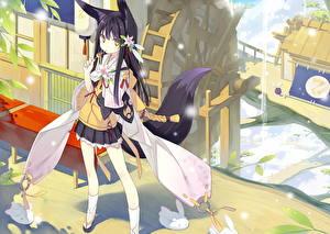 Hintergrundbilder Kitsune