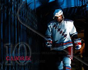 Pictures Hockey Marian Gaborik