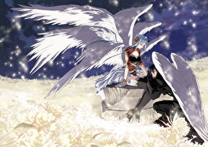 Picture Angel 2 Guy  Anime
